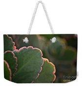 Sunset Succulents Weekender Tote Bag