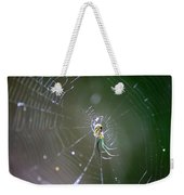 Sunshine On Swamp Spider Weekender Tote Bag