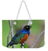 Superb Starling Weekender Tote Bag