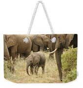 Surrounded By Family Weekender Tote Bag