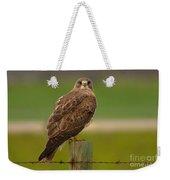 Swainsons Hawk Weekender Tote Bag