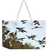 Swallows - All In The Family Weekender Tote Bag