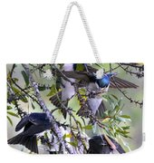 Swallows In Pooler Weekender Tote Bag
