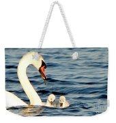 Swan And Signets On Wall Lake  Weekender Tote Bag