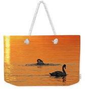 Swans In Early Light  Weekender Tote Bag