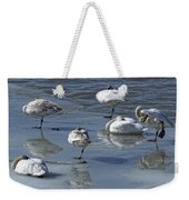 Swans On The Ice Along The Tagish Weekender Tote Bag