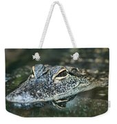 Sweet Baby Alligator Weekender Tote Bag