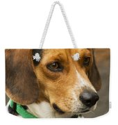 Sweet Little Beagle Dog Weekender Tote Bag