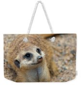 Sweet Meerkat Face Weekender Tote Bag