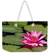 Sweet Pink Water Lily In The River Weekender Tote Bag
