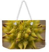 Sycamore Seed Pod Weekender Tote Bag