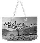 sycamore trees in Ascona - Ticino Weekender Tote Bag by Joana Kruse