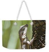 Ta-ta Lizard Weekender Tote Bag