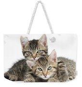 Tabby Kittens Cuddling Weekender Tote Bag