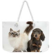 Tabby-point Birman And Dachshund Pup Weekender Tote Bag
