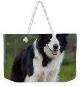 Taj - Border Collie Weekender Tote Bag by Michelle Wrighton