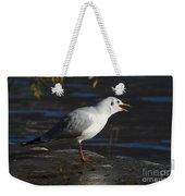 Talking Bird Weekender Tote Bag