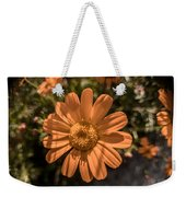 Tanacetum Painted In Red Weekender Tote Bag