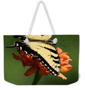 Tantalizing Tiger Swallowtail Butterfly Weekender Tote Bag