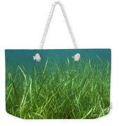 Tapegrass In Freshwater Lake Weekender Tote Bag