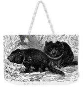 Tasmanian Devil Weekender Tote Bag