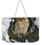 Tawny Owl Strix Aluco In Nest Hole Weekender Tote Bag