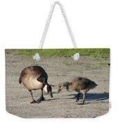 Teaching Weekender Tote Bag
