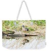 Teal Duck Standing On A Log Weekender Tote Bag