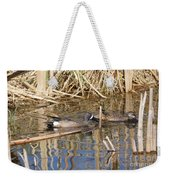 Teal Swiming Along Cattails Weekender Tote Bag
