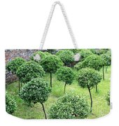Temple Garden Trees Weekender Tote Bag