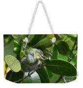 Tennesse Warbler Eating Mangrove Weekender Tote Bag