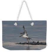 Tern Emerging With Fish Weekender Tote Bag