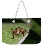 Terrestrial Turtle Bug Weekender Tote Bag