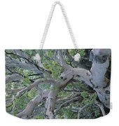 Texas Madrone Tree Limbs Weekender Tote Bag