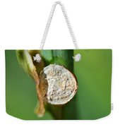 Thd Daylily Was Here Weekender Tote Bag