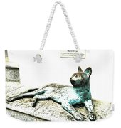 The Asian Civilisations Museum Cat Weekender Tote Bag