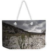 The Bank Of The Nueces River Weekender Tote Bag