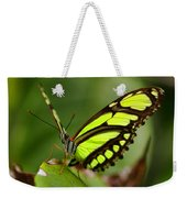 The Beautiful Color Of A Malachi Butterfly Weekender Tote Bag