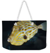 The Beautiful Iridescent Stripes Weekender Tote Bag