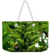 The Bee Chases The Fly? Weekender Tote Bag