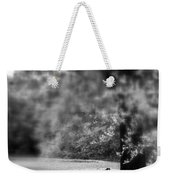 The Bench In The Park Weekender Tote Bag