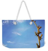 The Blueberry Bush  Weekender Tote Bag by Katie Cupcakes