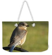 The Bluebird Of Happiness Weekender Tote Bag