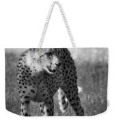 The Cheetah  Weekender Tote Bag