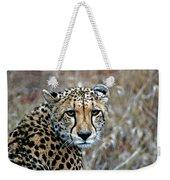The Cheetah Stare Weekender Tote Bag