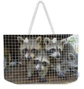 The Clan Weekender Tote Bag
