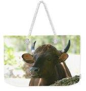 The Cow Weekender Tote Bag
