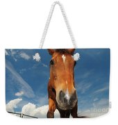 The Curious Horse Weekender Tote Bag