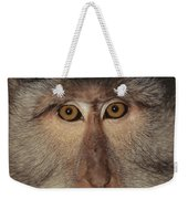 The Face Of A Long-tailed Macaque Weekender Tote Bag