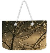 The Frozen Branches Of A Small Birch Weekender Tote Bag